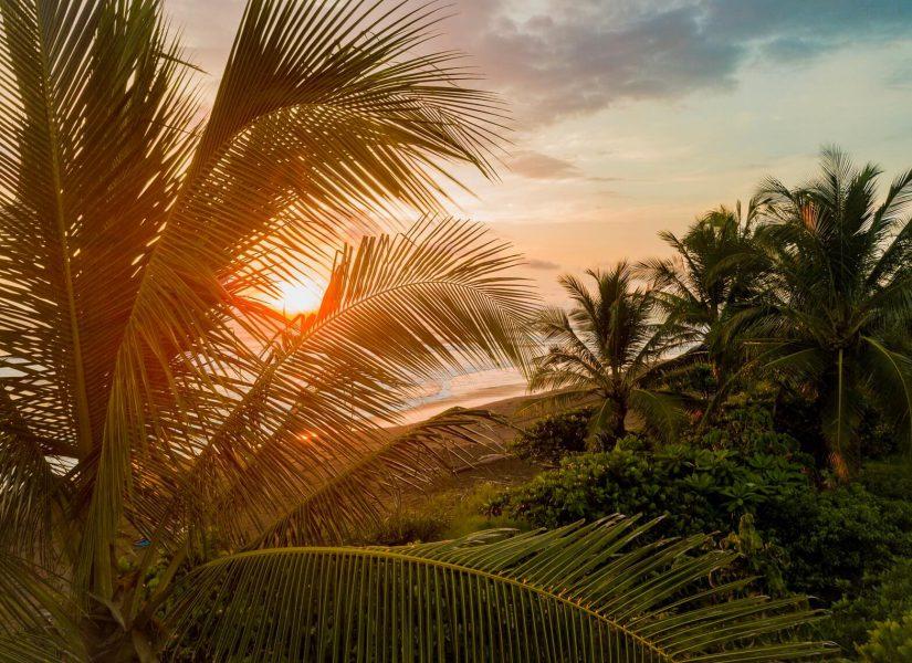 reiseagenturbrandner costarica individualreise selbstfahrer Mietwagenreise palmen strand6