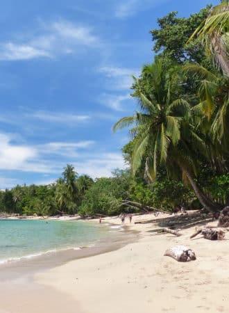 reiseagenturbrandner reisen costa rica individualreise deluxe palmen