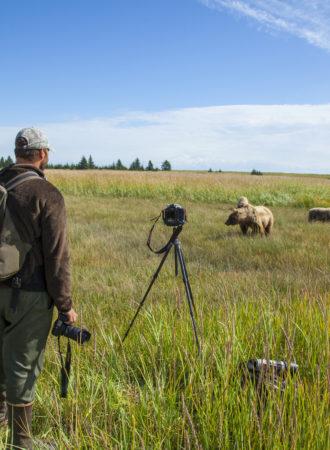 reiseagenturbrandner individualreise bärenbeobachtung alaska fotoreise